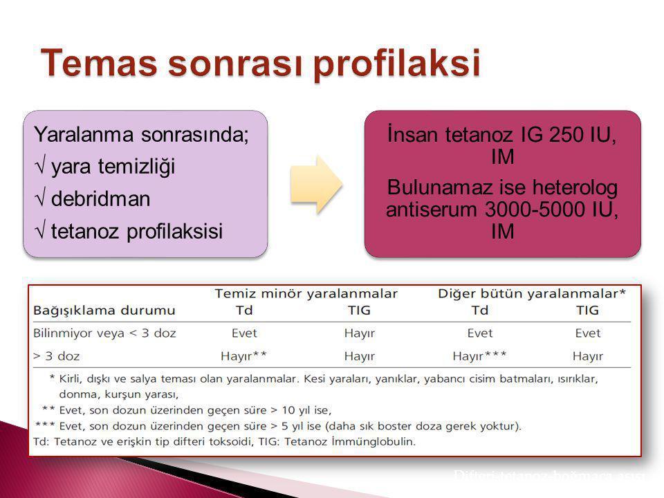 Tetanozun profilaksisi ve endikasyonları