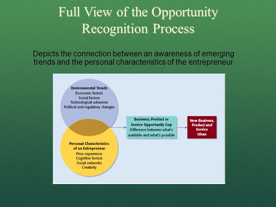 Full View of the Opportunity Recognition Process