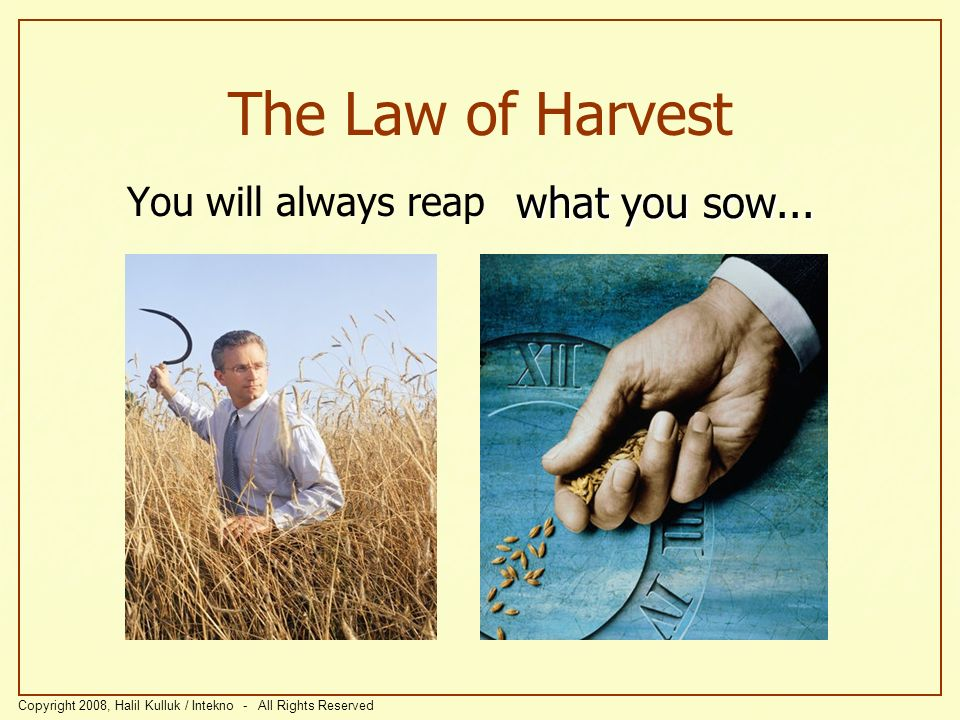 The Law of Harvest what you sow... You will always reap
