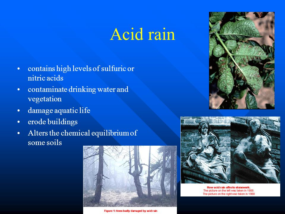 Acid rain contains high levels of sulfuric or nitric acids