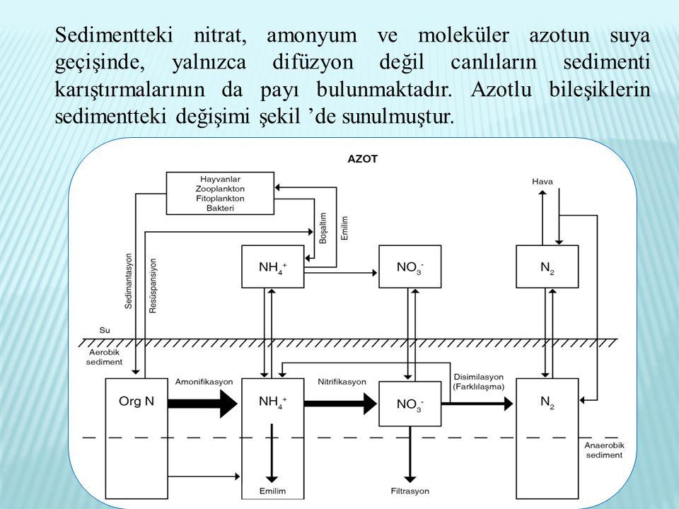 Isıtma radyatörlerinin bimetalik boyutları. Isıtma radyatörleri: yükseklik ve uzunluk