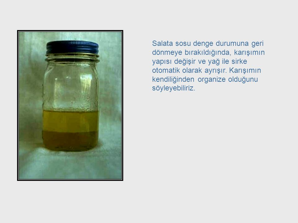 Oil and Vinegar - Equilibrium