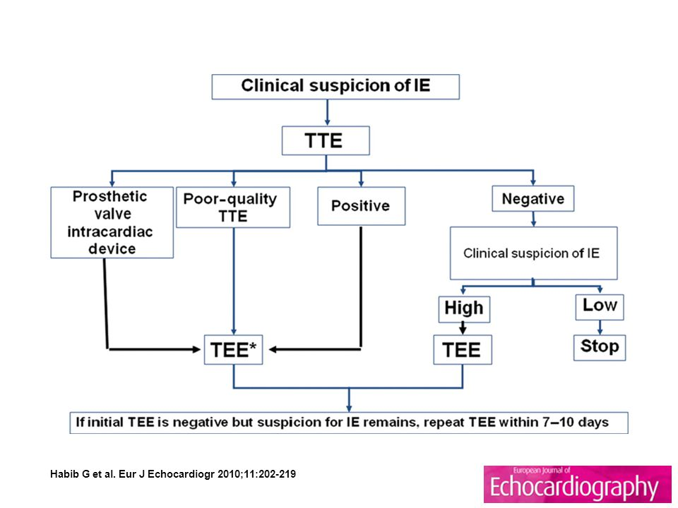 Algorithm showing the role of echocardiography in the diagnosis and assessment of infective endocarditis (adapted from Habib et al.10 with permission). IE, infective endocarditis; TTE, transthoracic echocardiography; TEE, transoesophageal echocardiography.