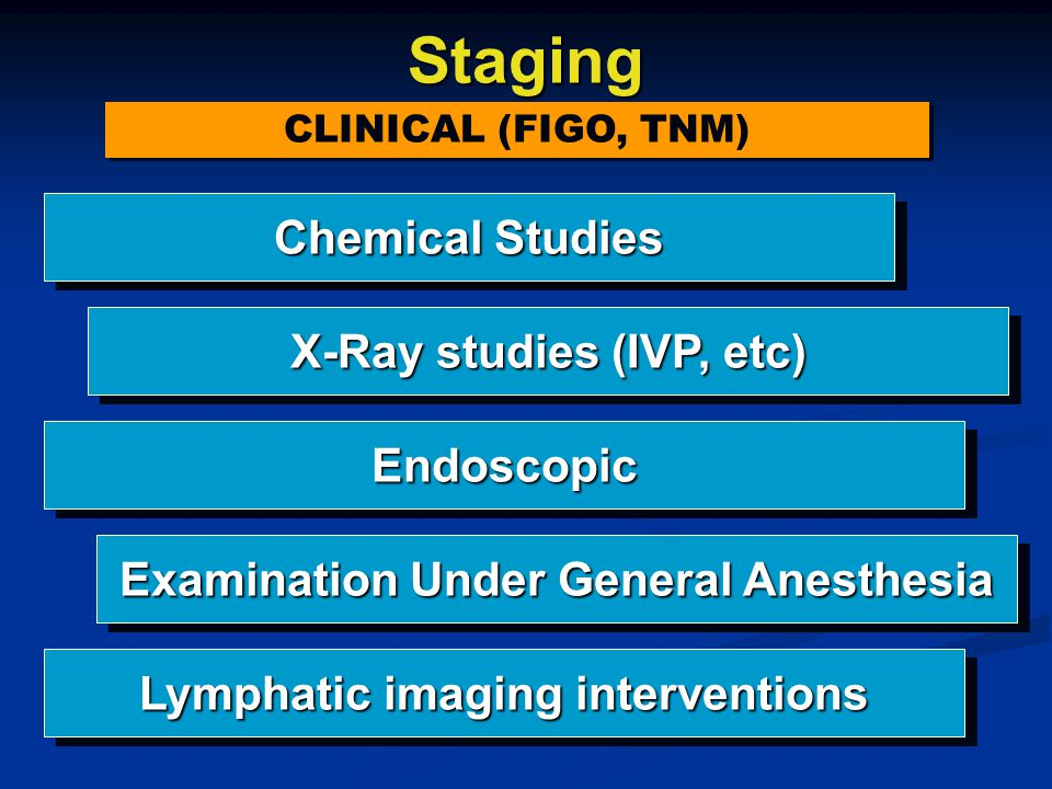 Staging Chemical Studies X-Ray studies (IVP, etc) Endoscopic