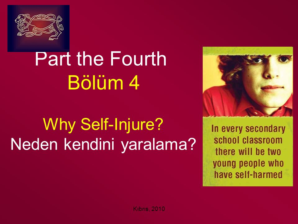 Part the Fourth Bölüm 4 Why Self-Injure Neden kendini yaralama