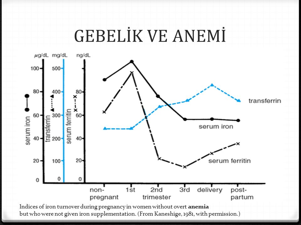 GEBELİK VE ANEMİ Indices of iron turnover during pregnancy in women without overt anemia.