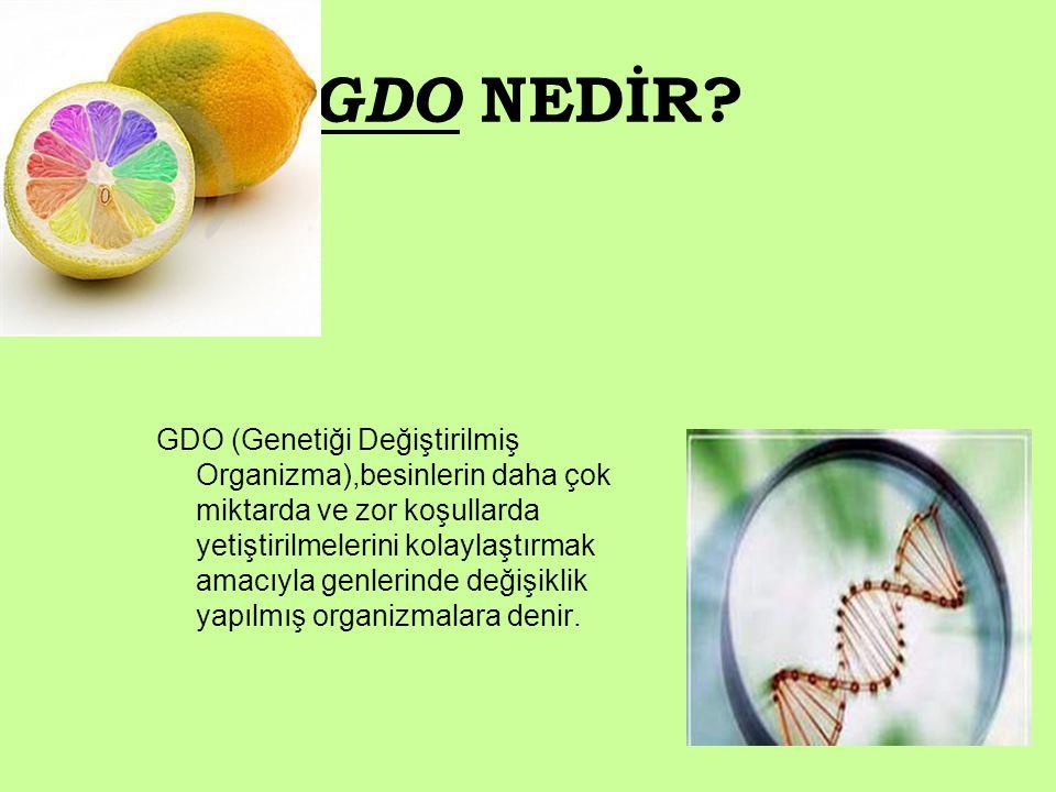 GENETİĞİ DEĞİŞTİRİLMİŞ ORGANİZMALAR - ppt indir