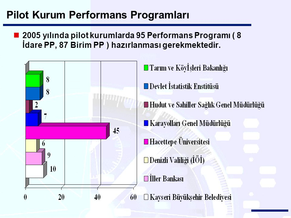Pilot Kurum Performans Programları