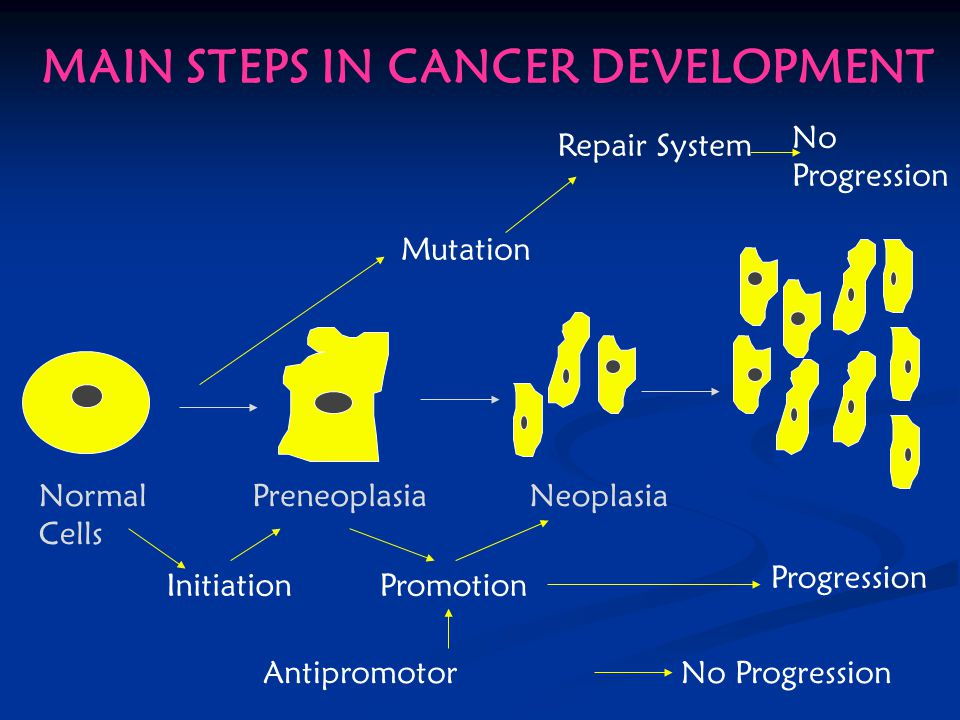 MAIN STEPS IN CANCER DEVELOPMENT