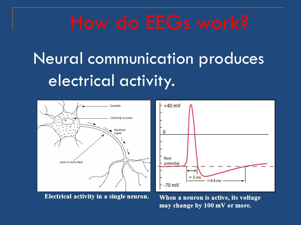 How do EEGs work Neural communication produces electrical activity.