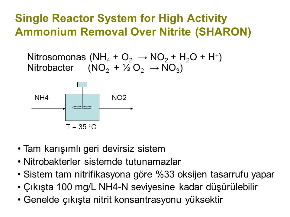 Single Reactor System for High Activity Ammonium Removal Over Nitrite (SHARON)