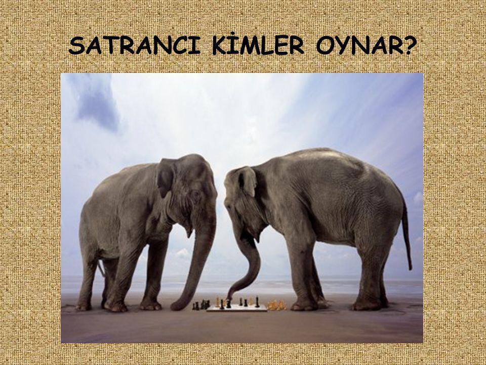 Картинки с надписью слоник, пасхой скрап