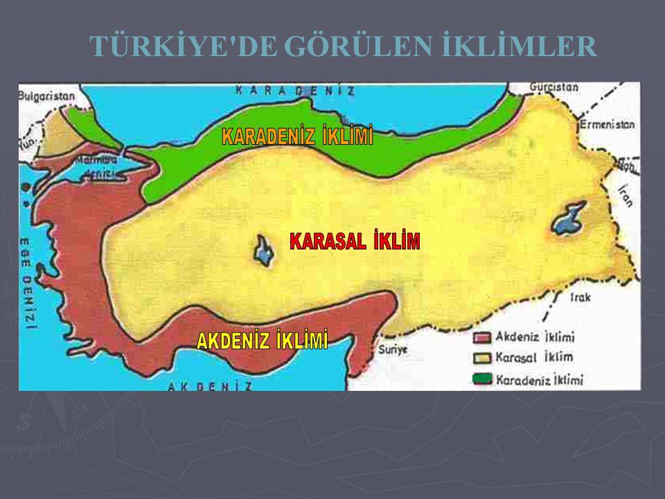 TÜRKİYENİN İKLİMİ Türkiye'de gerek matematik konumun gerekse özel ...