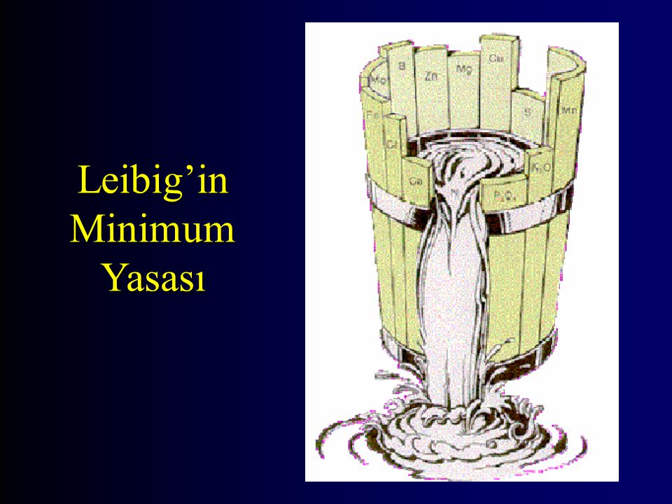 Leibig'in Minimum Yasası