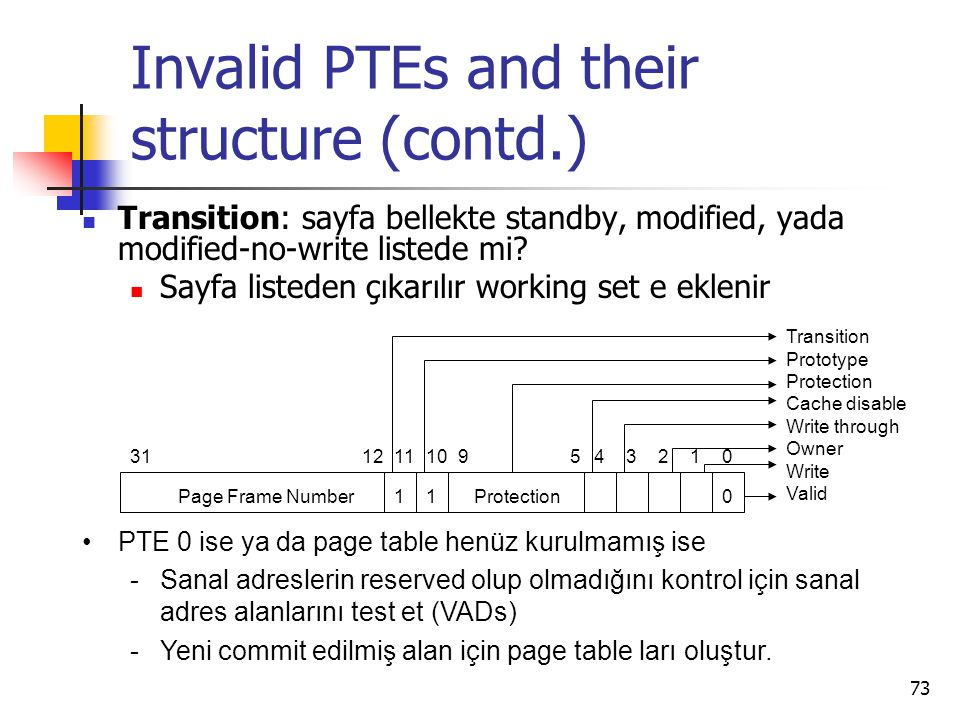 Invalid PTEs and their structure (contd.)