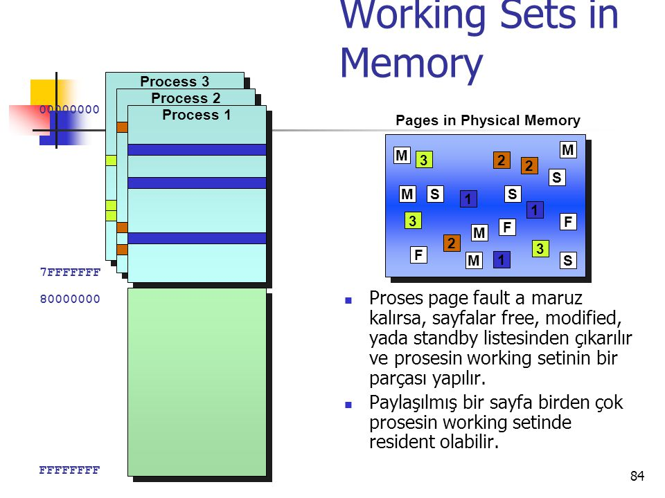 Pages in Physical Memory