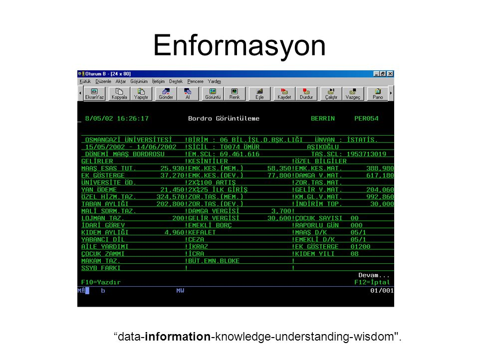 Enformasyon data-information-knowledge-understanding-wisdom .
