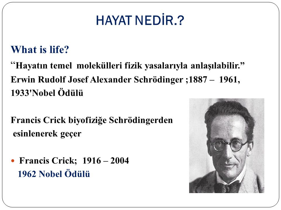 HAYAT NEDİR. What is life