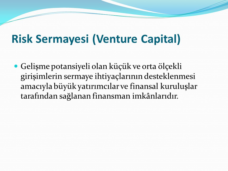 Risk Sermayesi (Venture Capital)