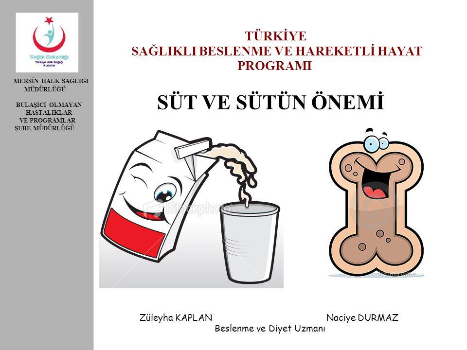 Sut Ve Sutun Onemi Saglikli Beslenme Ve Hareketli Hayat Turkiye