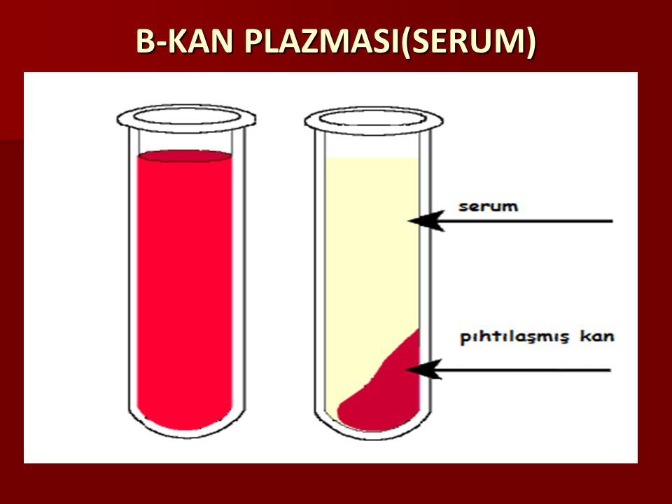 B-KAN PLAZMASI(SERUM)