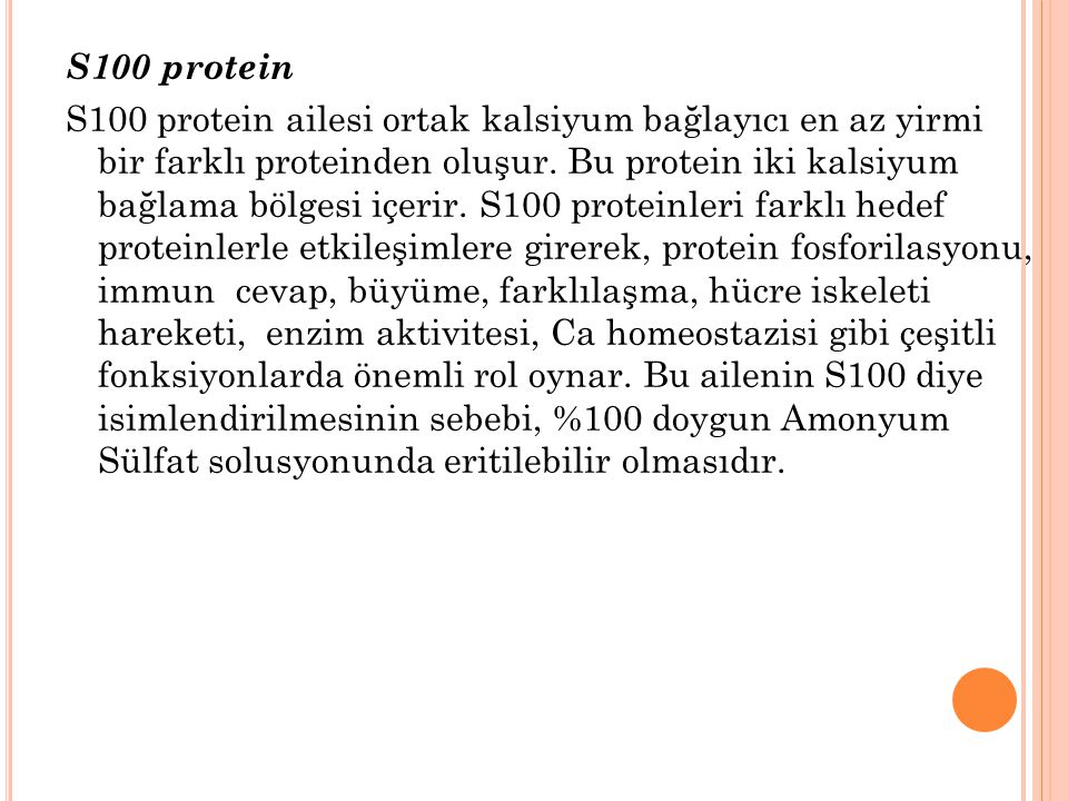 S100 protein