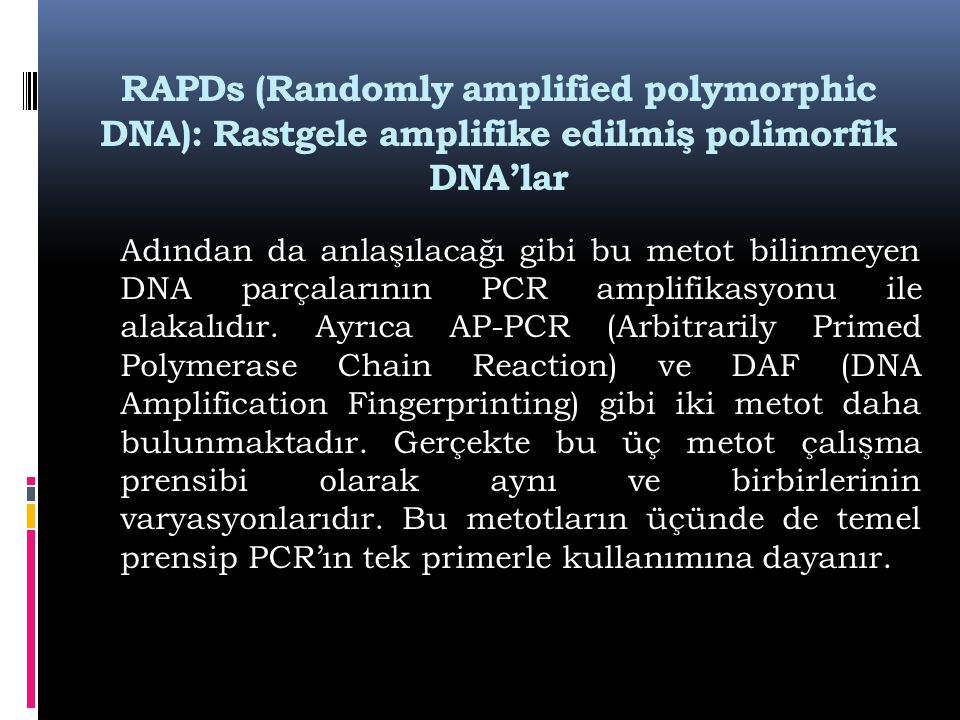 RAPDs (Randomly amplified polymorphic DNA): Rastgele amplifike edilmiş polimorfik DNA'lar
