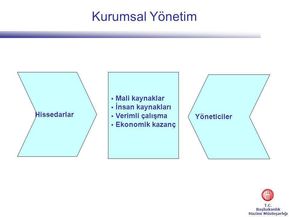 Yönetimin verimliliği, kurumsal yönetimin verimlilik kriterleri