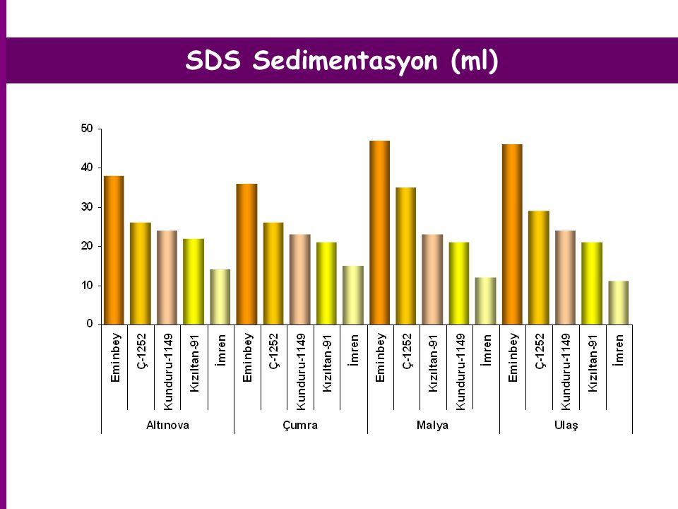 SDS Sedimentasyon (ml)