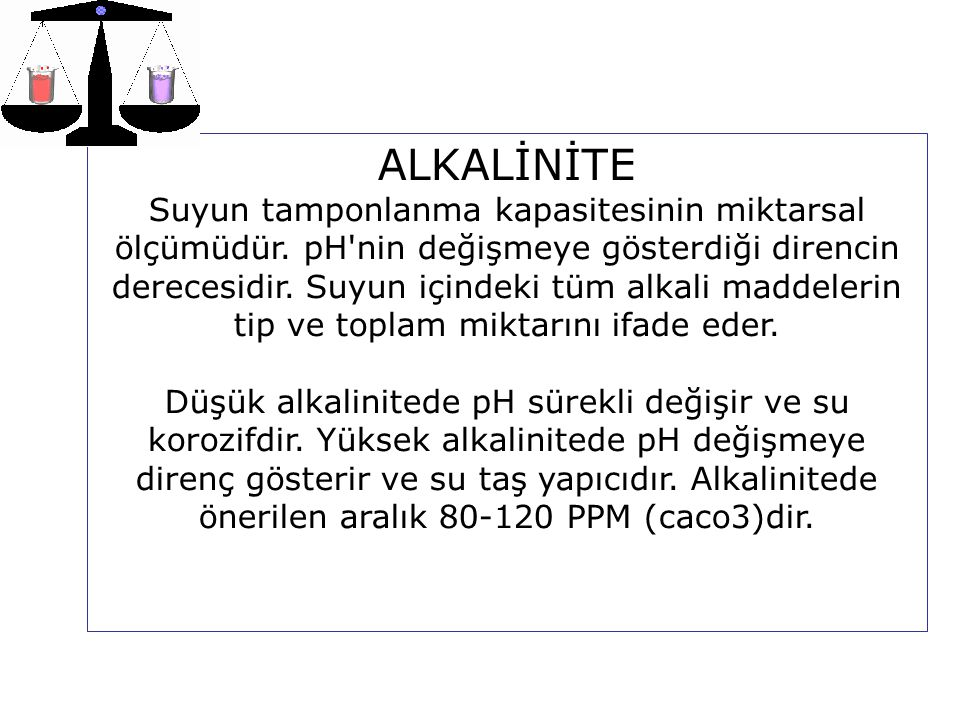 ALKALİNİTE