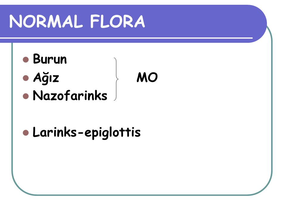 NORMAL FLORA Burun Ağız MO Nazofarinks Larinks-epiglottis