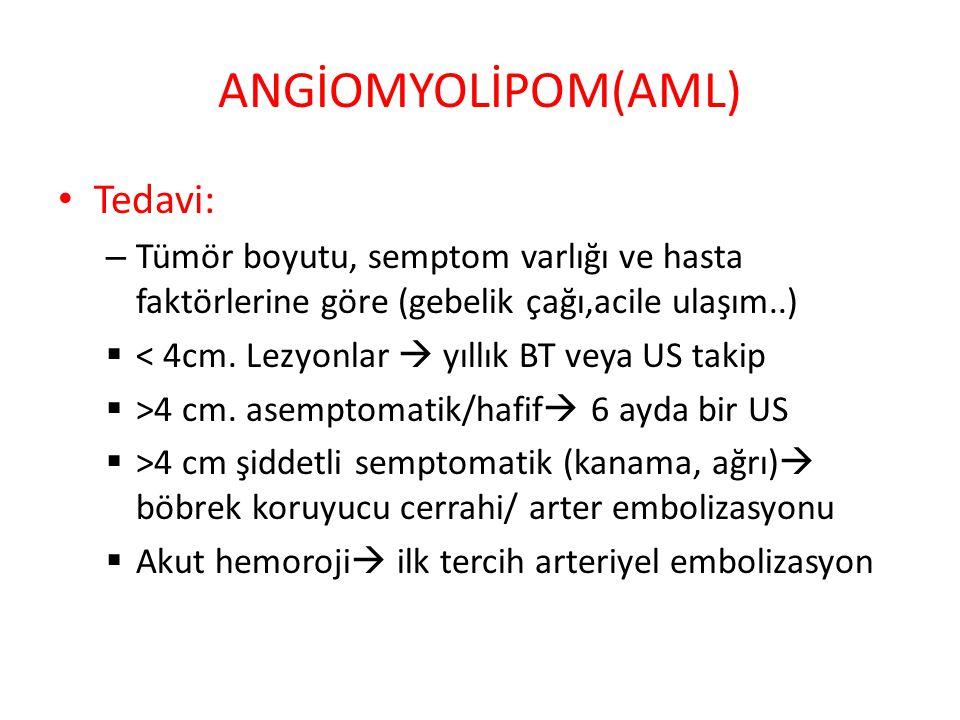 Böbrek amiloidozisi: formlar, semptomlar ve tedavi 54