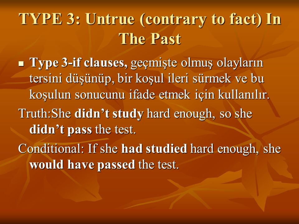 TYPE 3: Untrue (contrary to fact) In The Past