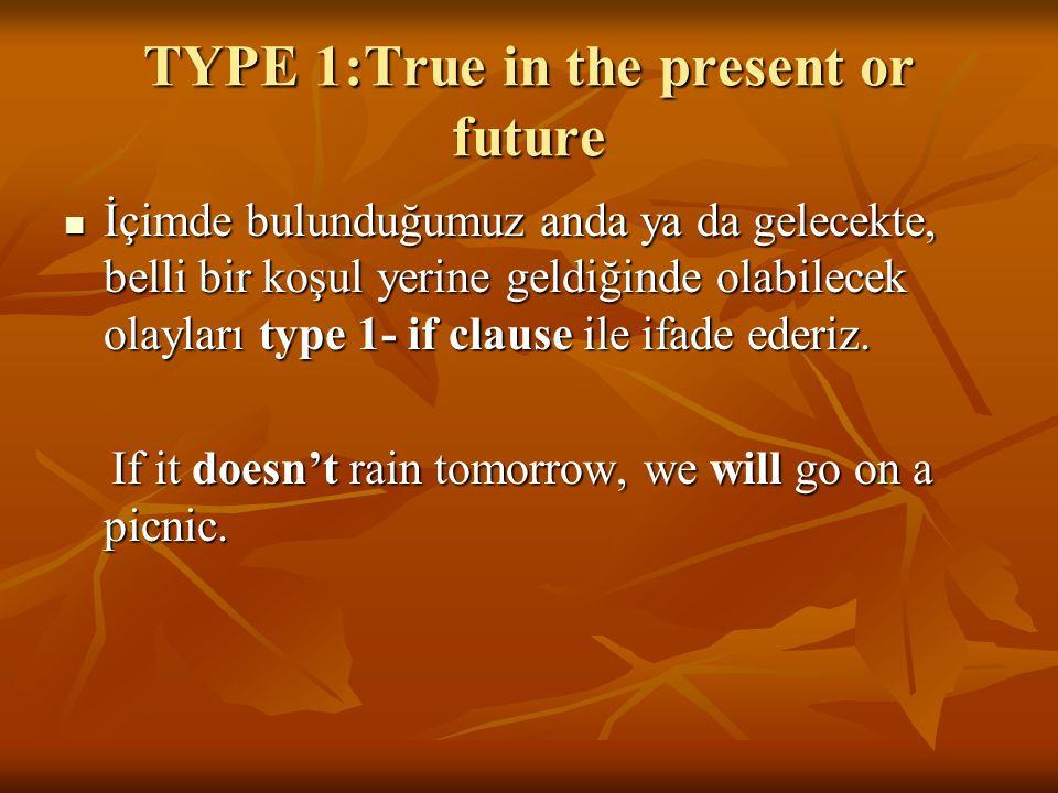TYPE 1:True in the present or future