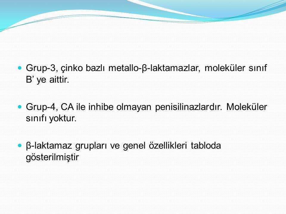 Klavulanik asit: eylem ve özellikleri 18